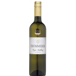 Thummerer Egri Csillag 2018 / 2019