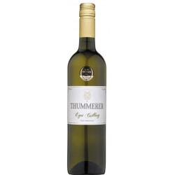 Thummerer Egri Csillag 2020 - Selection.hu